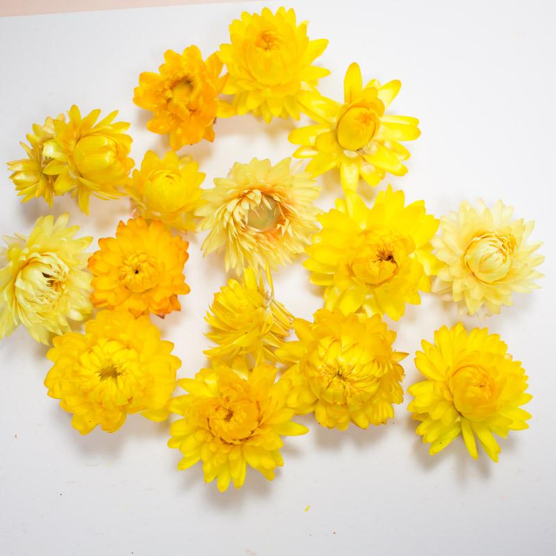 10 Fleurs Sechees Jaune Pour Vos Diy Pause Moderne