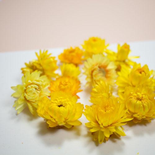 10 Fleurs séchées jaune