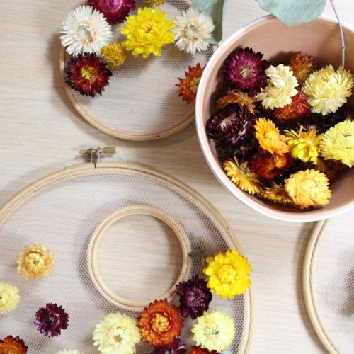 Fleurs séchées couleur pourpre
