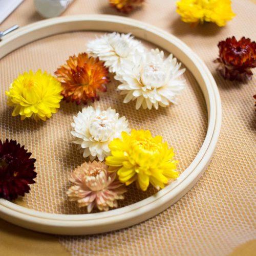 Pause Moderne - kit Day tambour fleurs séchée