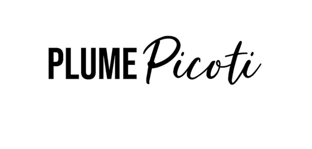 PAUSE MODERNE - article presse blog plume et picoti_