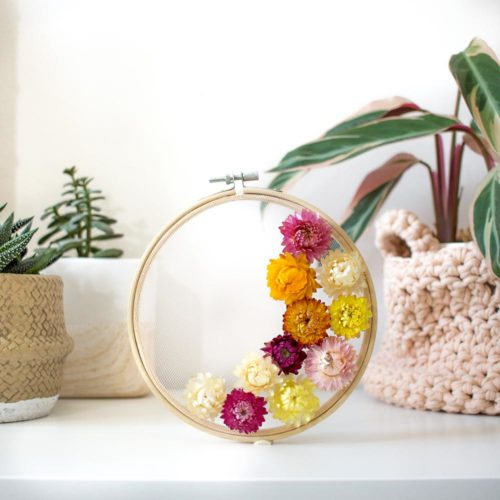 10 Fleurs séchées blanche