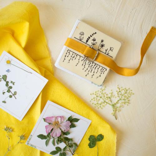 PAUSE MODERNE - presse à fleurs diy_-6