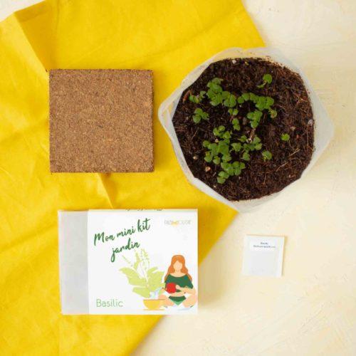 PAUSE MODERNE - Mon mini kit jardin basilic (1 sur 1)